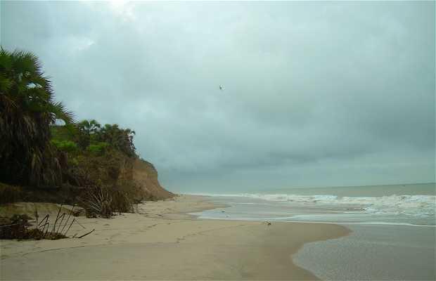 Playas salvajes de Angola