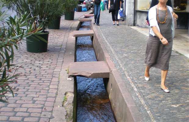 La città di Friburgo