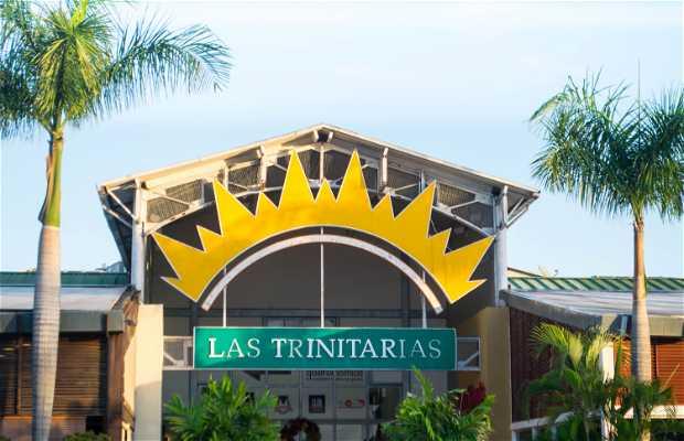 Centro Comercial Las Trinitarias