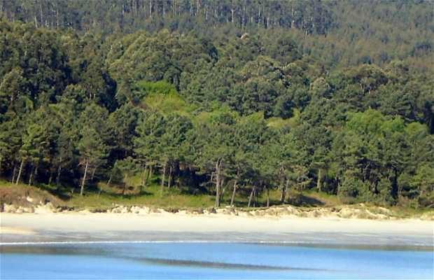 Spiaggia Area Longa
