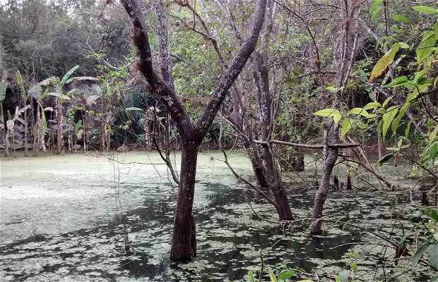 Cenotes Nabalam