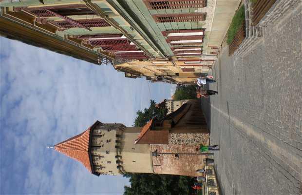 Sibiu City Walls