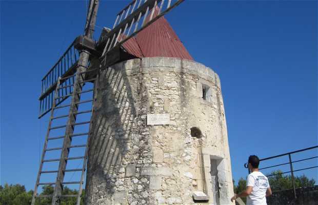 Molino de Daudet