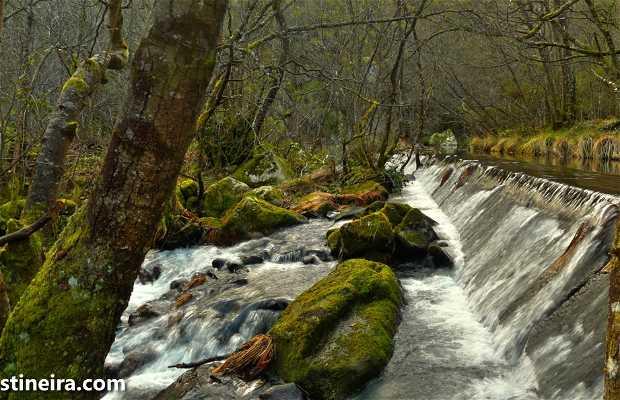 Route pour le canyon du fleuve Mao