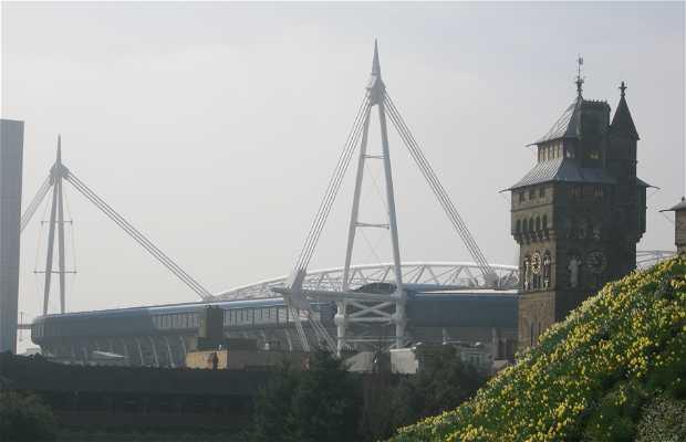 Estadio Millenium