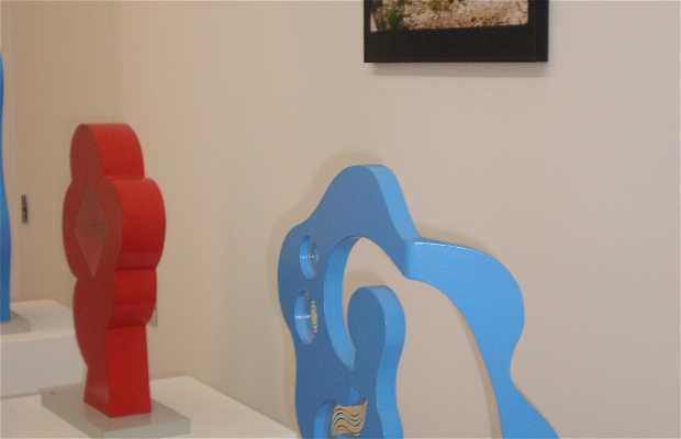 Exhibition José Guimarães