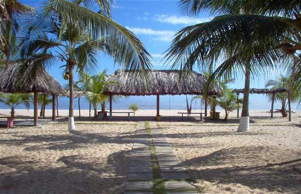 Playa Machurucuto