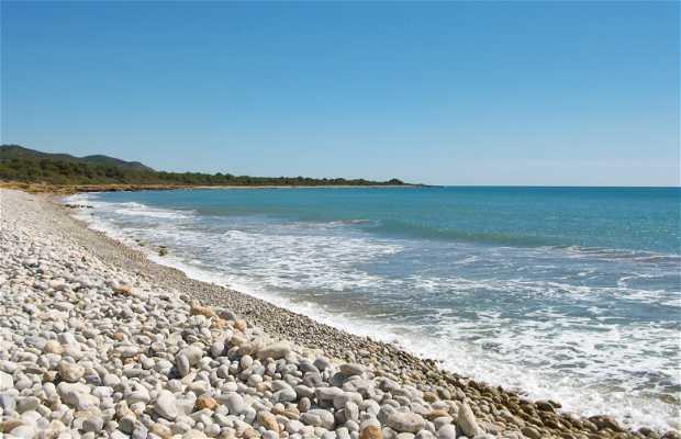 La Basseta beach