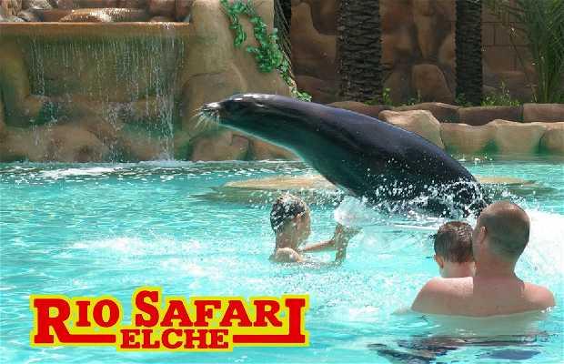 Rio Safari Zoo