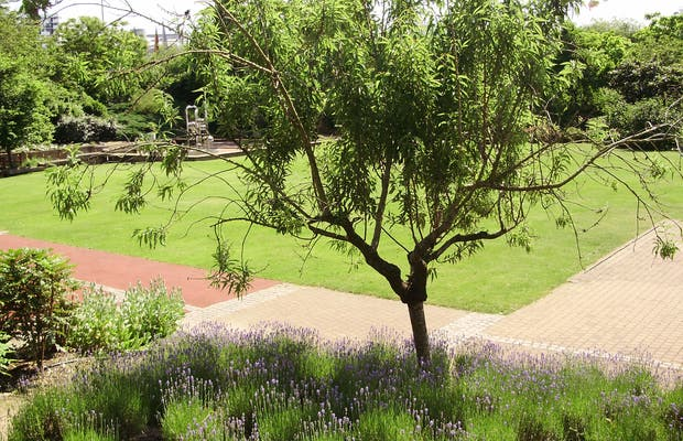 El Jardín de los 5 Sentidos