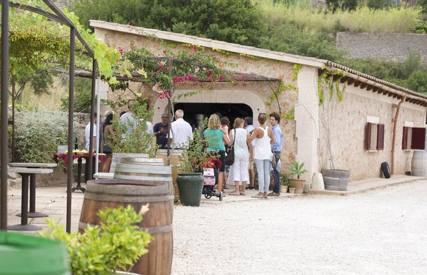 Wine Routes Mallorca