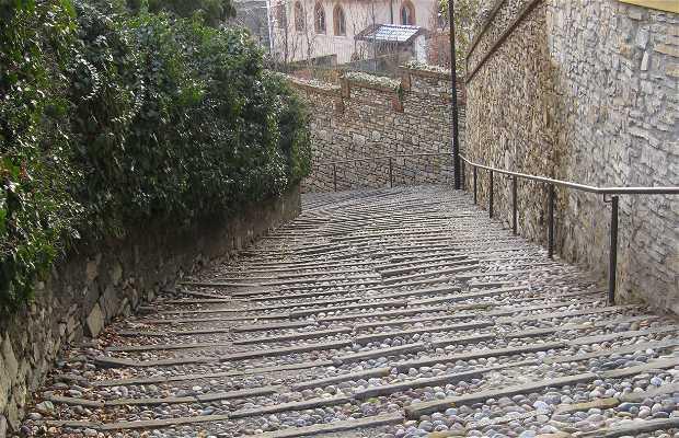 Mura venete di Bergamo