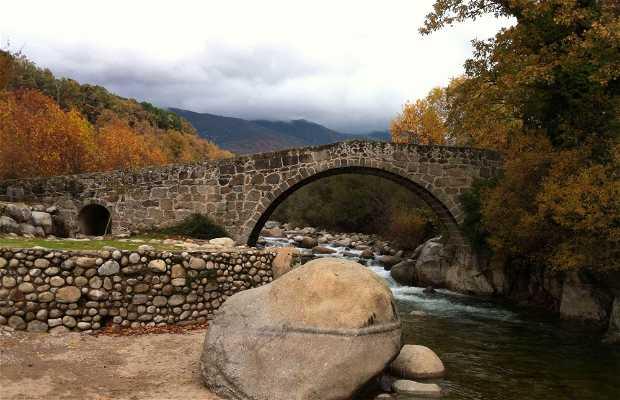 Puente Parral