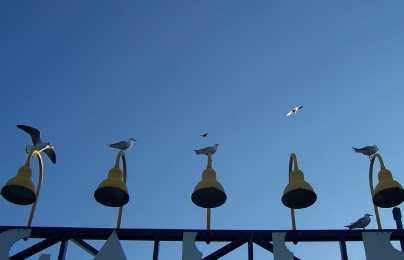 Wharf, Darwin