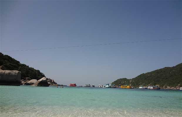 Nguyen Islands