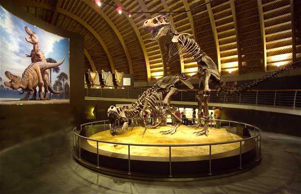 Jurassic Museum of Asturias