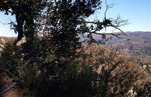 Collsacabra Nature Park