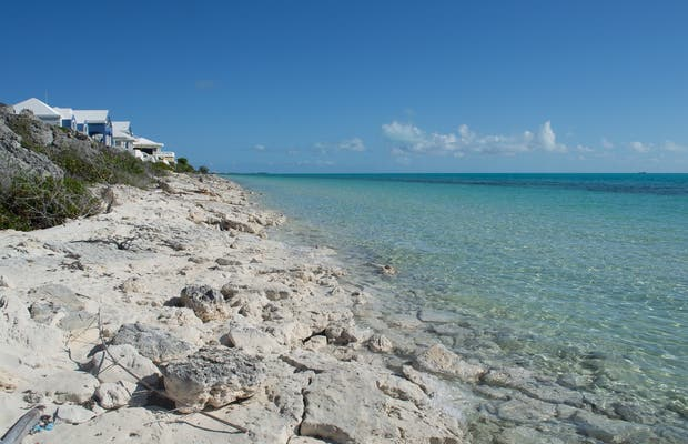 Long Bay Beach a Middle Caicos: 1 opinioni e 3 foto