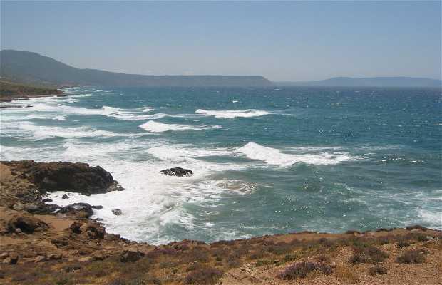 Playa krstel