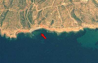 Bare Cove