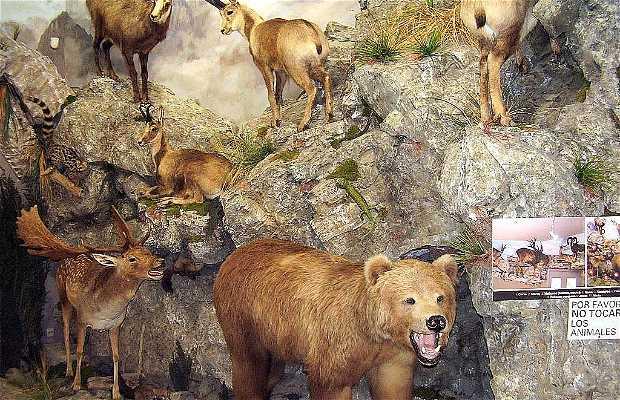 Musée de la faune sauvage