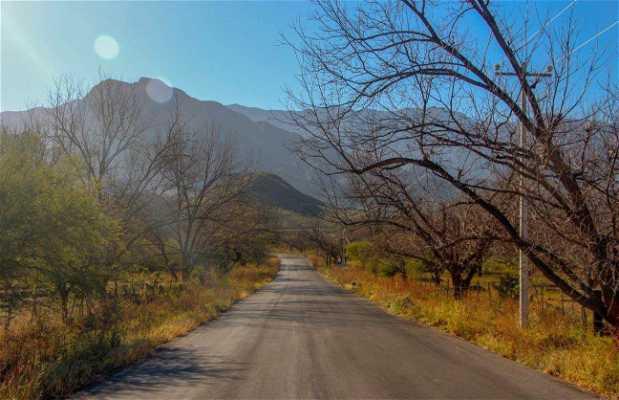 Huertas de Nogales
