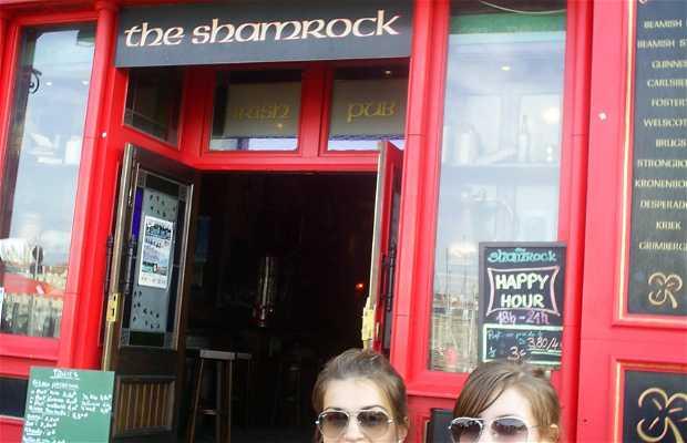 The Shamrock, Irish Pub
