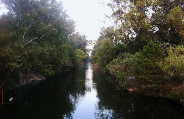 Parque del Río