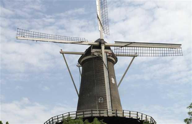 Valk Windmill