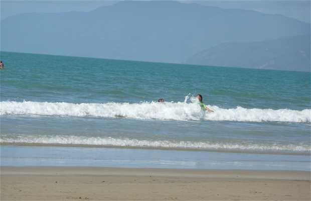 Playa de Port Douglas