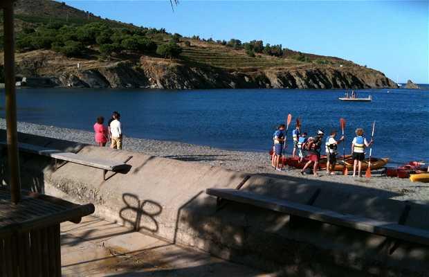 Les plages de paulilles port vendres port vendres 1 exp riences et 2 photos - Restaurant le france port vendres ...