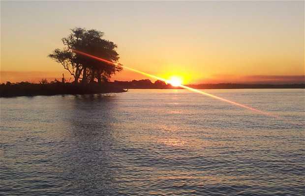 Recorrido en barco por el río Chobe