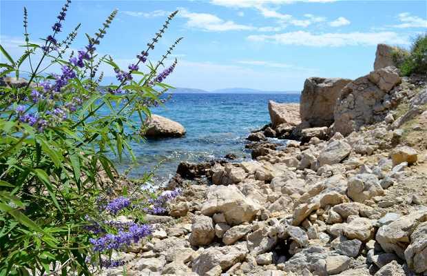 Playa de Oprna
