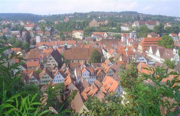 Hohentübingen Castle