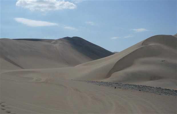 Sand Buggy en el Desierto de Huacachina