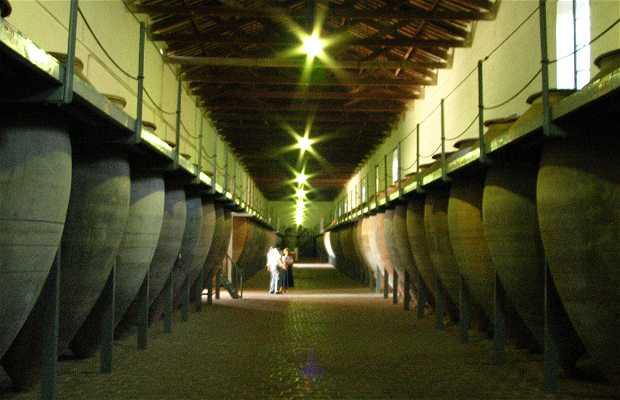Bodega museo en valdepe as 1 opiniones y 1 fotos - Plano de valdepenas ...