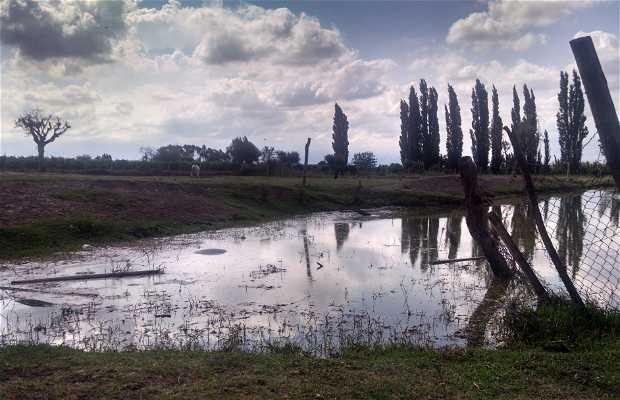 Luján de Cuyo, Mendoza