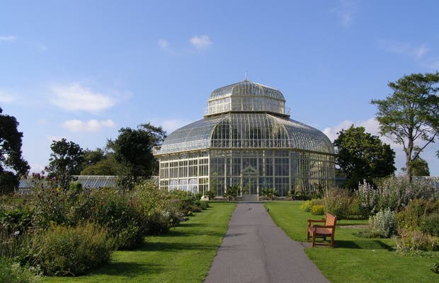 Jard n bot nico nacional de irlanda en dubl n 9 opiniones for Jardin botanico nacional