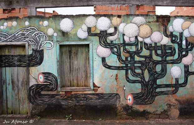 Casas com grafitti