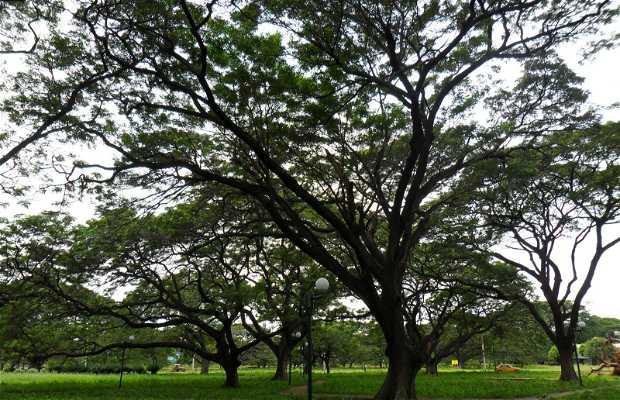 Parque de los Algarrobillos