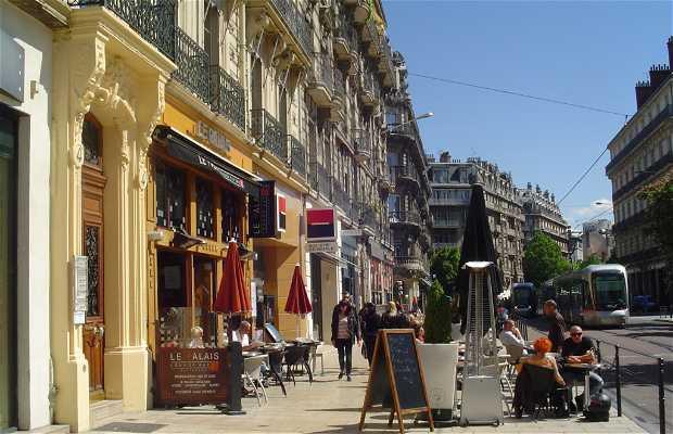 Café Brasserie Palais De La Bière