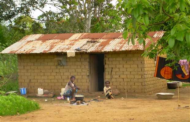 Niños pigmeos de Gabón