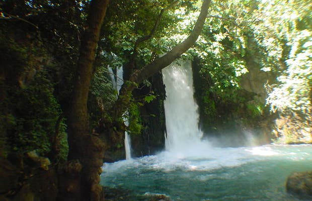 Banias Natural Reserve