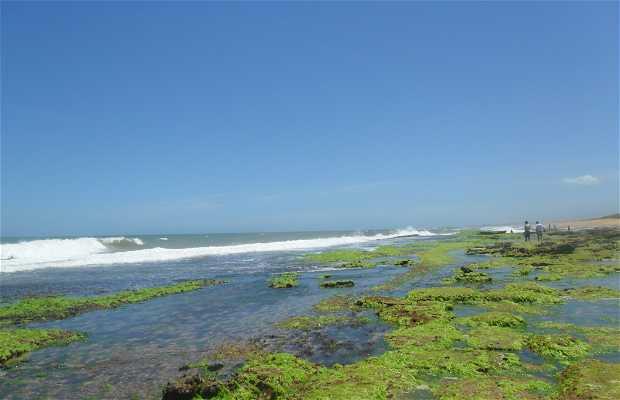 Praia dos Recifes