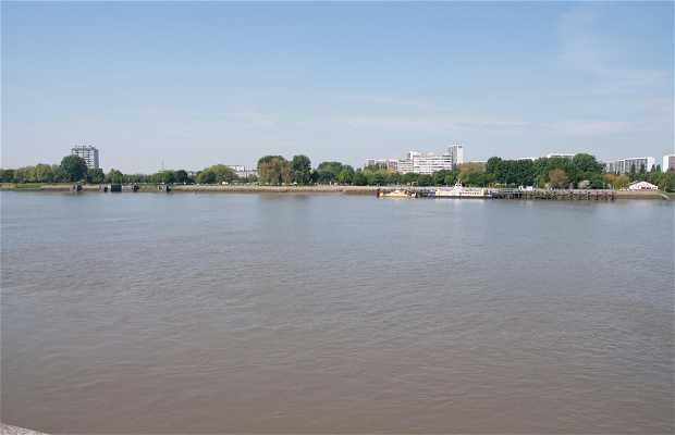Bord du fleuve