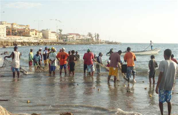 Playa de las Tenazas