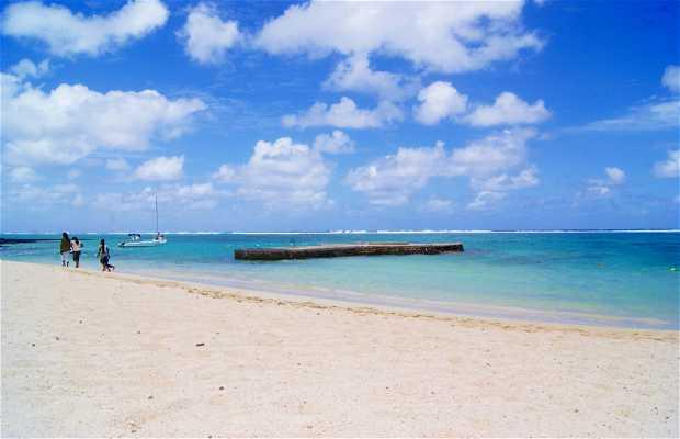 Bluebay Marine Park