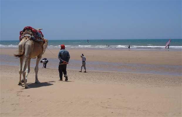 Playa Sidi Kauki