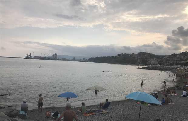 Playa Libera Attrezzata