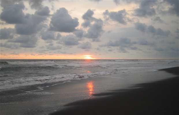 Playas del Jiote